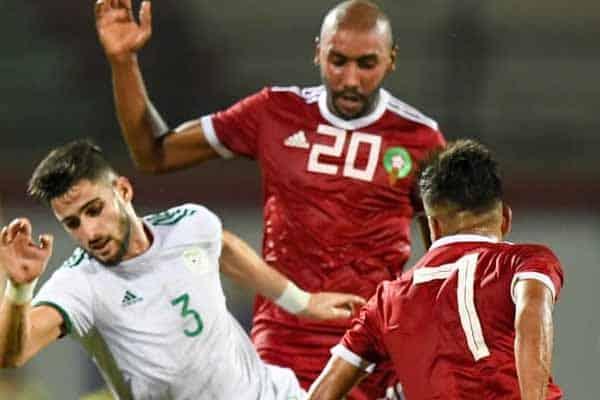 lions_locaux_algérie