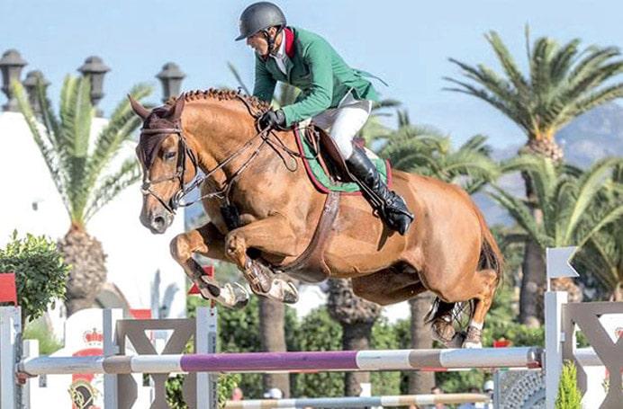 lions_equestre