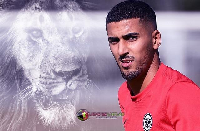 Aymen_Barkok_Lion