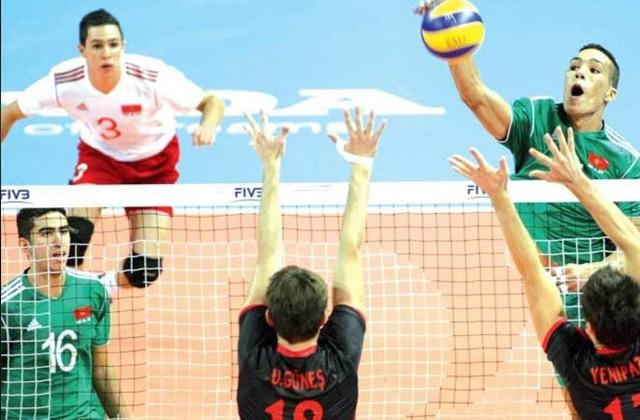 Lionceaux Volley