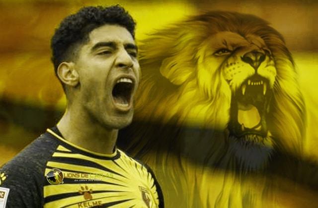 Masina_Lion